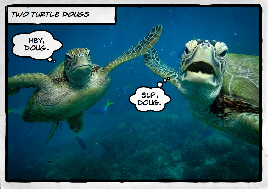 Turtle Dougs