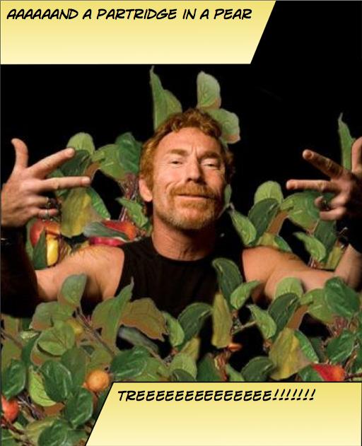 pear tree-1