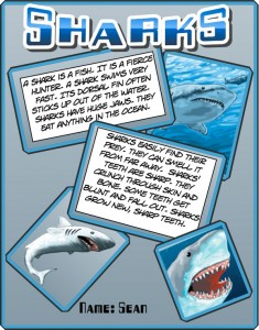 Shark poster created by a student
