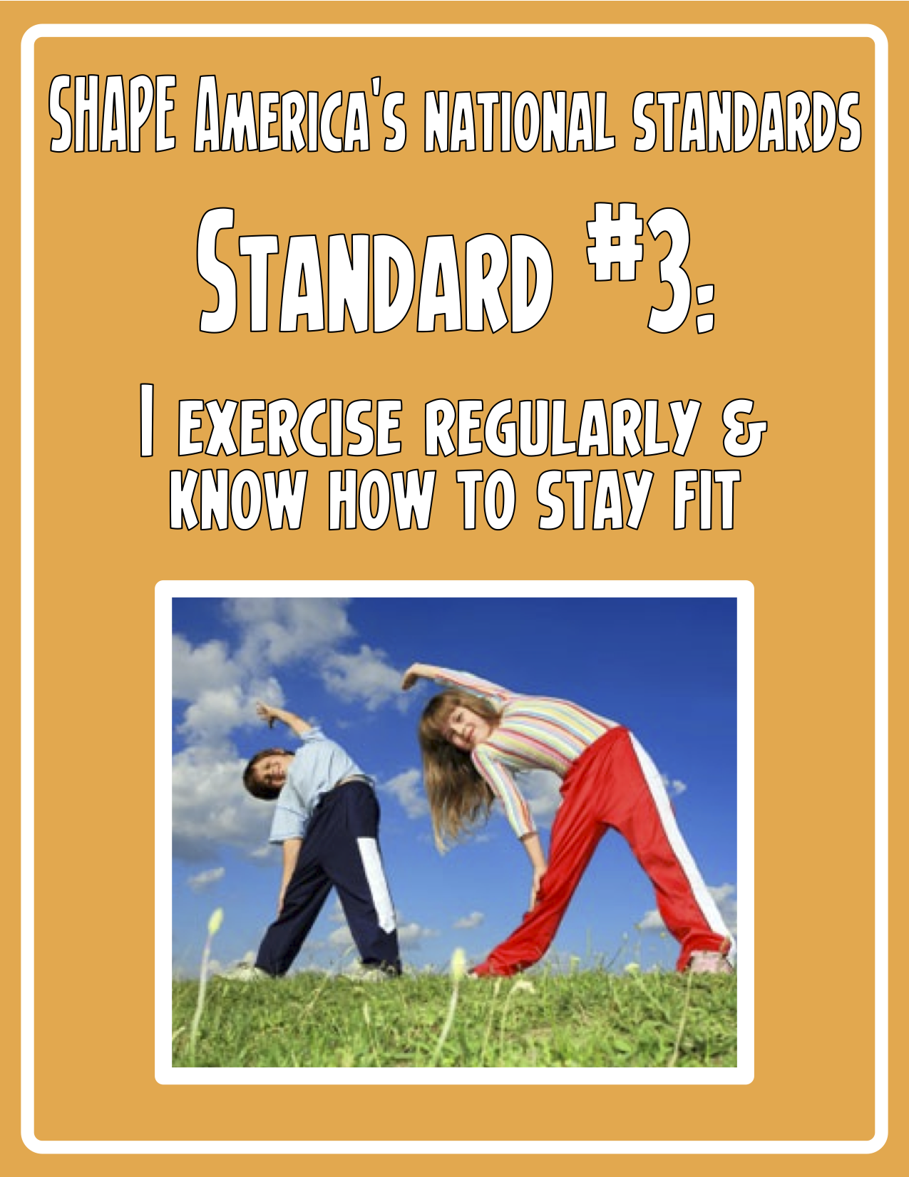 kid friendly national standards posters