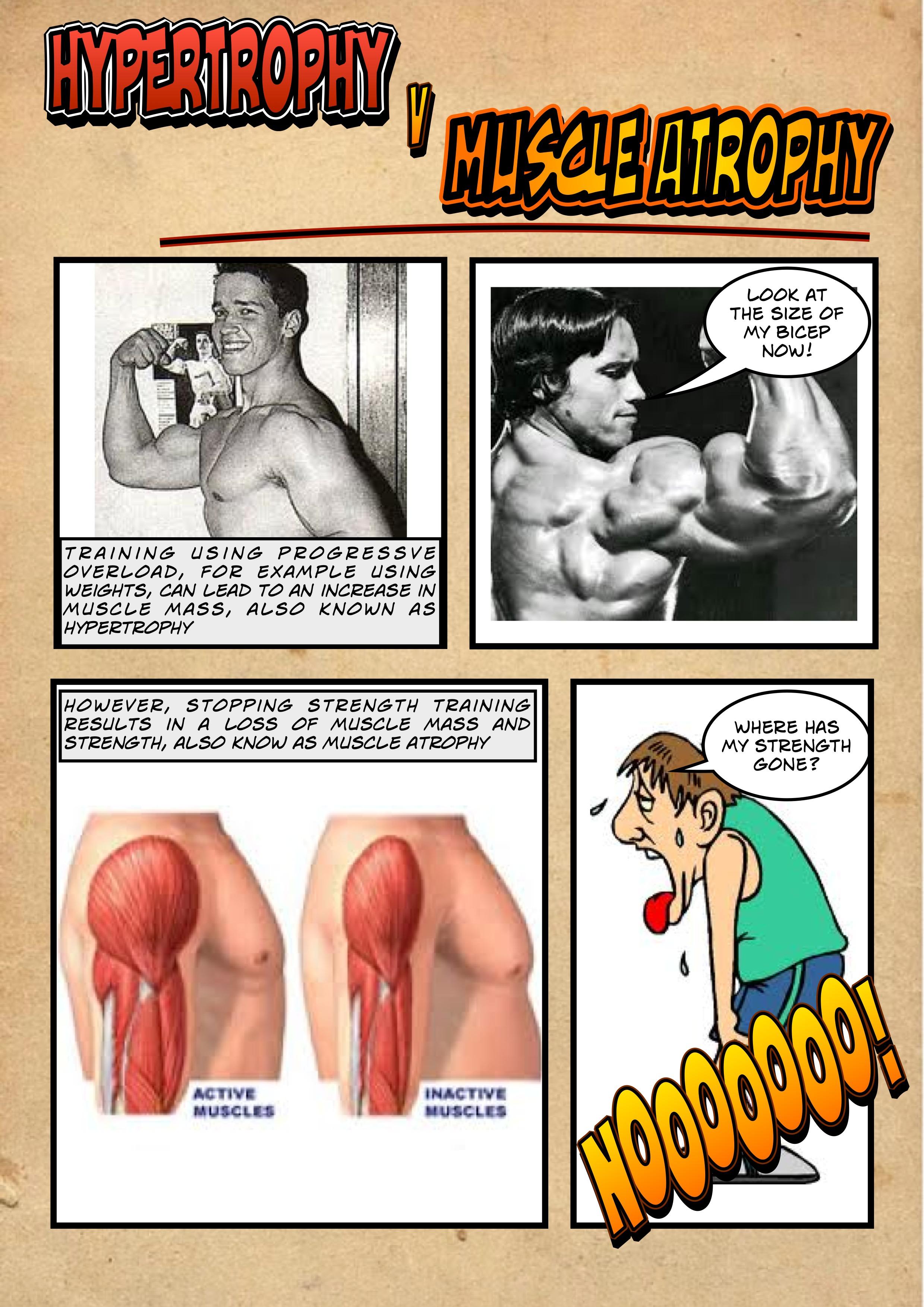 hypertrophy-v-muscle-atrophy1